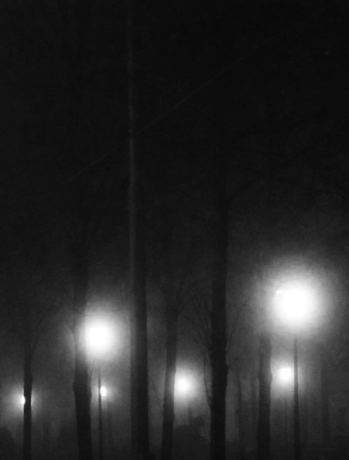 Lena Grass | bordeauxplatz