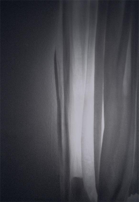Lena Grass | vorhang
